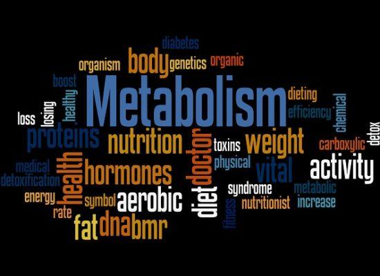 Metabolism, word cloud concept on black background.